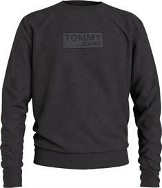 TOMMY JEANS Dm0dm10200